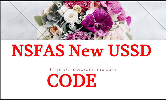 NSFAS To Introduce A New USSD Code To Manage Wallet.